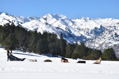 plateau de Beille - 24 mars